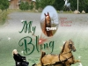 My Bling - Maple Hill Stables Company